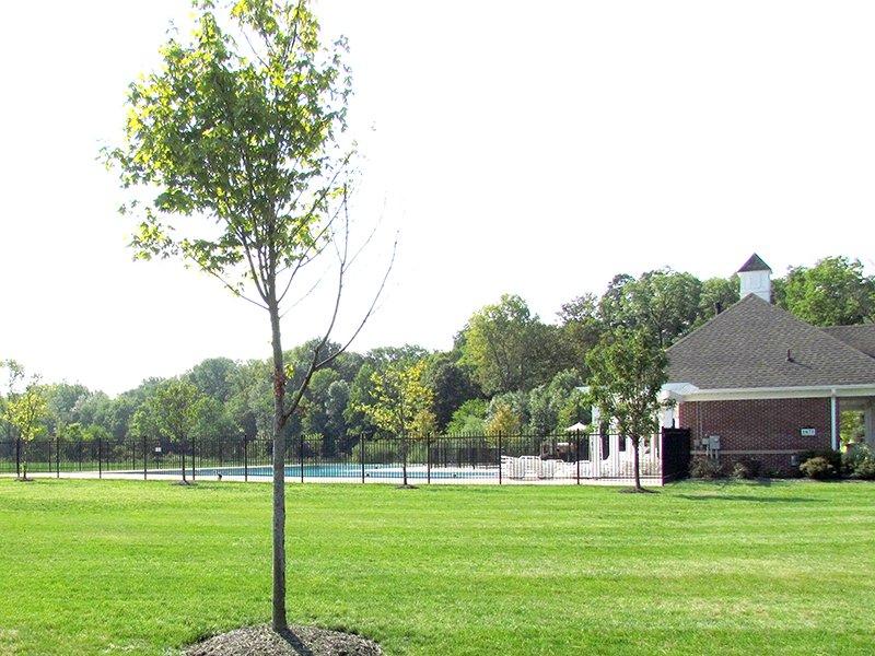 Community Pool: Summer Ridge, Brownsburg, IN