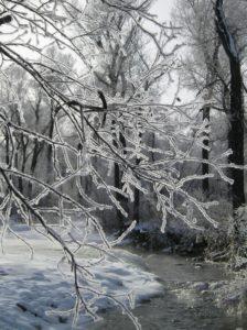Winter Nature Programs in Hendricks County