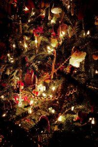 Brownsburg Christmas Tree Pickup